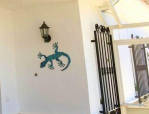 Gecko blue lagoon