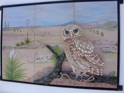 owl-scene