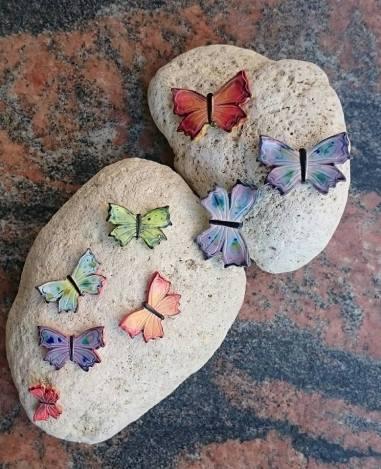 Butterflies various