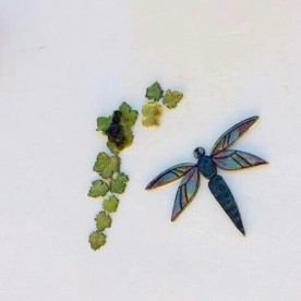 dragonfly-with-grapes