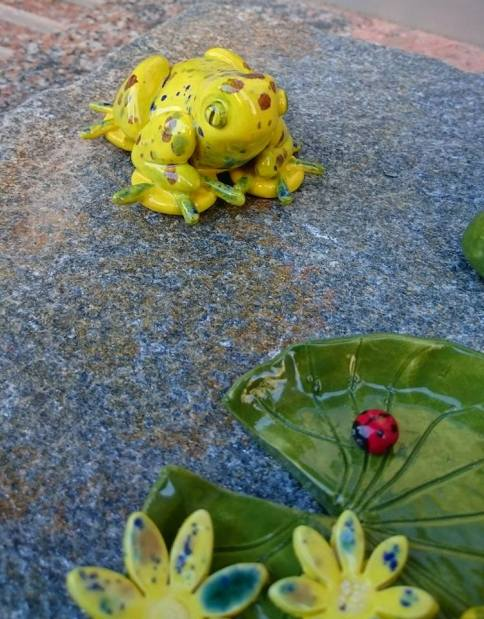 frog-after-the-ladybird