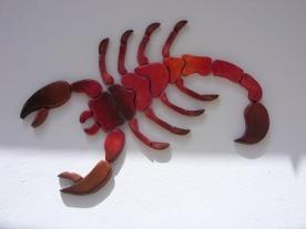 scorpion-sunset