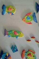 tropical-fish-6