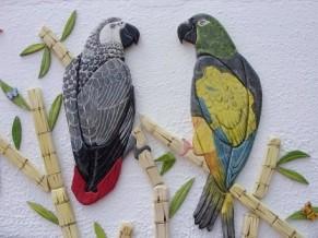 parrot-1