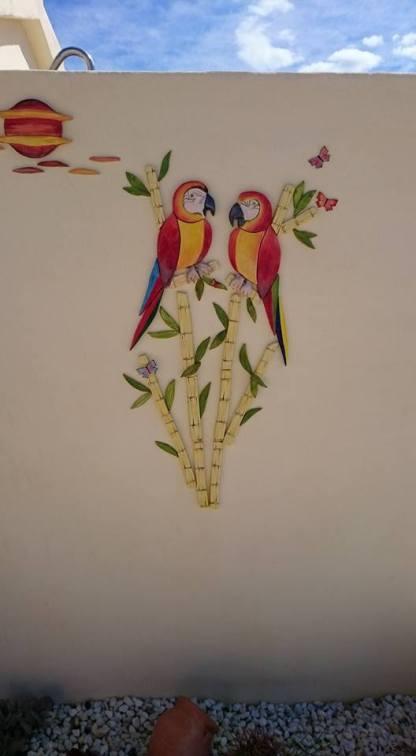 parrot-5