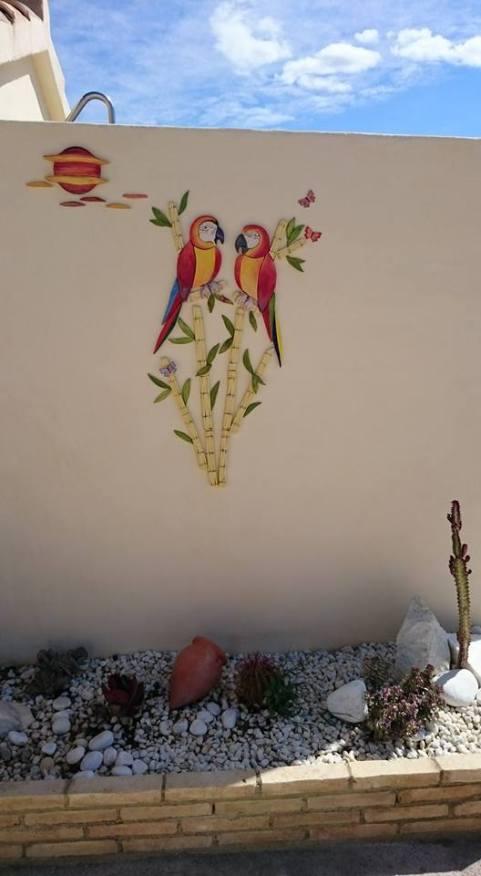 parrot-6a