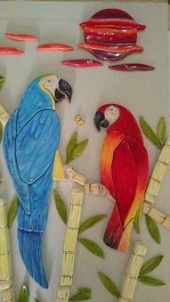parrots-beautiful