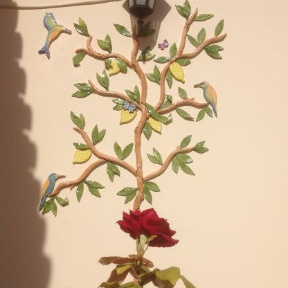 teresa-orange-lemon-tree-6
