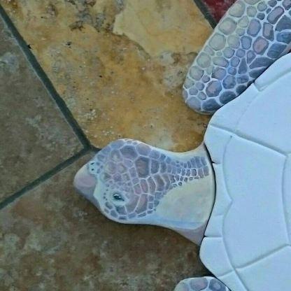 brown-turtle-working-progress-1