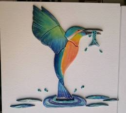 kingfisher-from-sharon